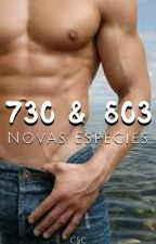 730 & 803 - Novas Espécies by CassiaSCabral