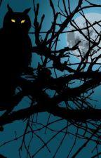 dangerous side of horror s1 by psycho_yoshiko