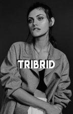 Tribrid??||Dolan Twins fanfic|| by Johanna_Petrova