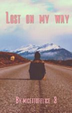 Lost on my way by micettofelice_3