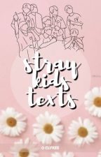 Stray Kids ↠ Texts by Clyree