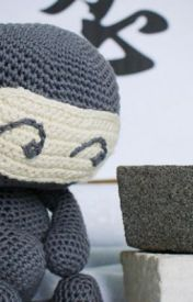 The tale of the stuffed Ninja by strawberrykiwi514