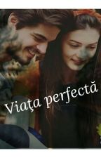 VIAŢA PERFECTĂ  by Cara-Clara-25