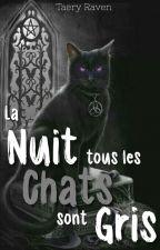 La nuit, tous les chats sont gris... by TaeryRaven