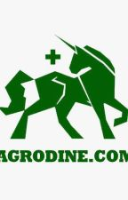 Agrodine by PainRelief4