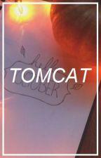 tomcat → y.min by cuddlychim