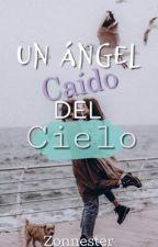 Un Ángel Caído del Cielo... by cottealone
