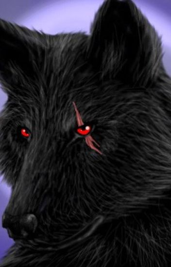 pure black wolf with blood red eyes anya danyi wattpad pure black wolf with blood red eyes
