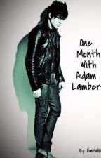 One Month With Adam Lambert (FanFic) by Captain--Rogers