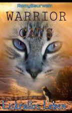 Warrior Cats-Eiskralles Leben by RomySaurwein
