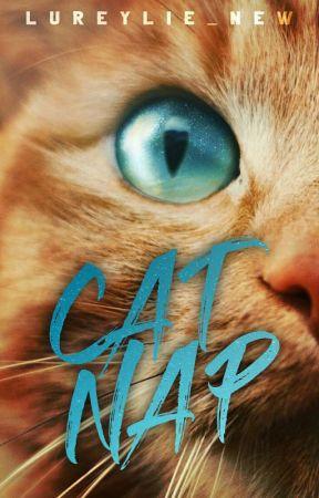 Catnap by Lureylie_new