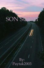 Son Sürat by paytak2003
