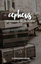 CEPHEUS ➣ headcannons by commumaraudeurs