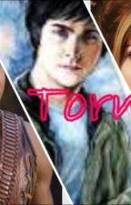 Torn ( PJO, HoO, HG, Divergent ) by Pancakes_Animatronic