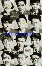 exo reaction by mschenmin27