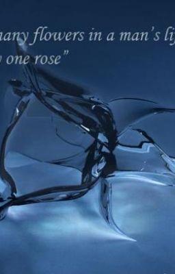 Đọc truyện (DBSK fic) Hoa hồng thủy tinh [full]