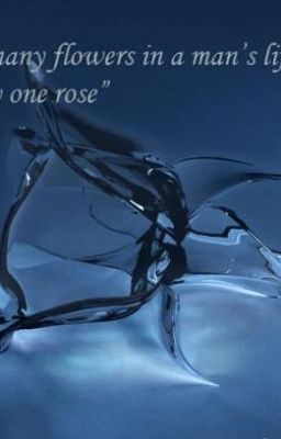 (DBSK fic) Hoa hồng thủy tinh [full]