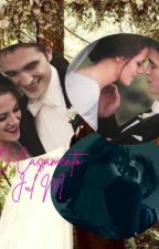 O Casamento by JulMontes