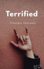 Terrified - Timóthee Chalamet by MW0311