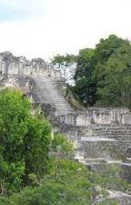 Explore the unique roundtrips in Belize Guatemala with tour composer by wolfstours