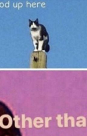 Detective Noir by PenwriterBlackink