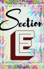 Section E [ON-GOING] by Crazy_Faji