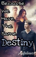 Because We Have The Same Destiny (TVD FF) by Apfeline07