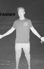 Falling Fast /:/ A Tanner Malmedal X Reader by cgh107