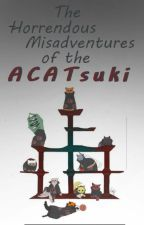 The horrendous misadventures of the aCATsuki by Village_of_Strawhat