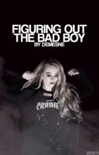 Figuring Out The Bad Boy  by demesne
