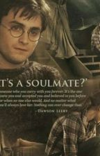 The Marriage Law- A Harry Potter Fanfiction by GoldenTrio4905