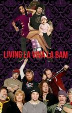 Living La Viva La Bam (Sequel To In Love With A Jackass) by HollsMags16
