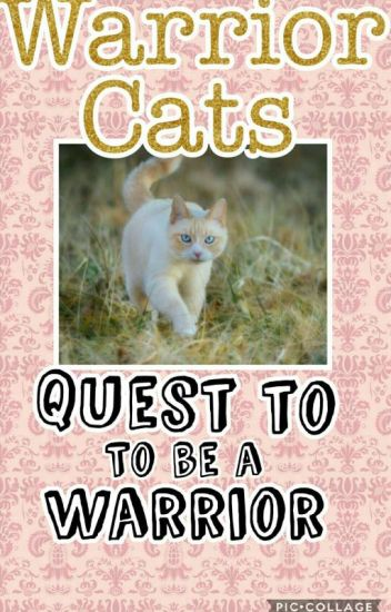 Quest To Be a Warrior {Book 1}