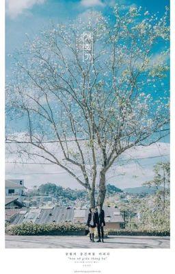 Nhật kí lớp X - những tháng ngày nhây lầy mà chúng ta không thể gặp lại