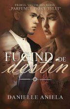 Fugind de Destin  by daniellejdc