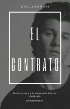 El contrato ~ Shawn Mendes by hollmendes
