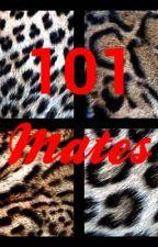 101 Mates(Abandoned) by JayBlueBird