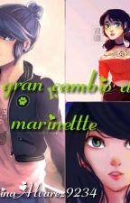 EL GRAN CAMBIO DE MARINETTE by ValentinaAlvarez9234