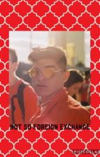 Not So Foreign Exchange | Nick Mara by beanzxfandoms