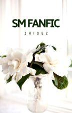 Secretly Married Fan Fiction by zhidez