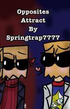 ~Opposites Attract~ Flug x Slug & BlackHat x WhiteHat by springtrap7777