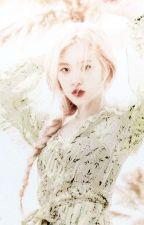 wonderland | rosé + idols by suzu1122