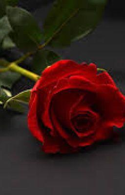 Wiersze Miłość Istnieje Naprawdę Ty Jesteś Moim