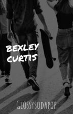 bexley curtis ✰  || the outsiders  by glossysodapop