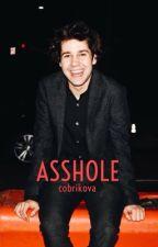 Asshole [David Dobrik] by cdobrikova
