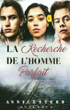 A LA RECHERCHE DE L'HOMME PARFAIT by annicette89