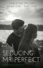 Seducing Mr. Perfect by giannegreen