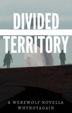 Divided Territory by Whynotagain