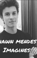 shawn mendes imagines  by shawn_access_123