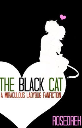 The Black Cat (a Miraculous Ladybug Fanfiction) - Marinette